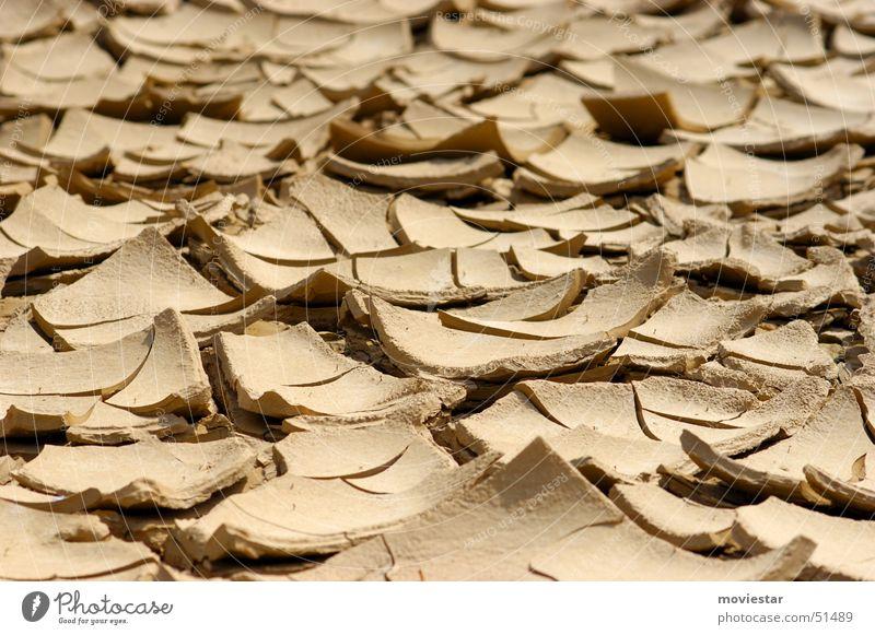 Trockenheit Wasser braun Erde trocken Pfütze Lehm hellbraun