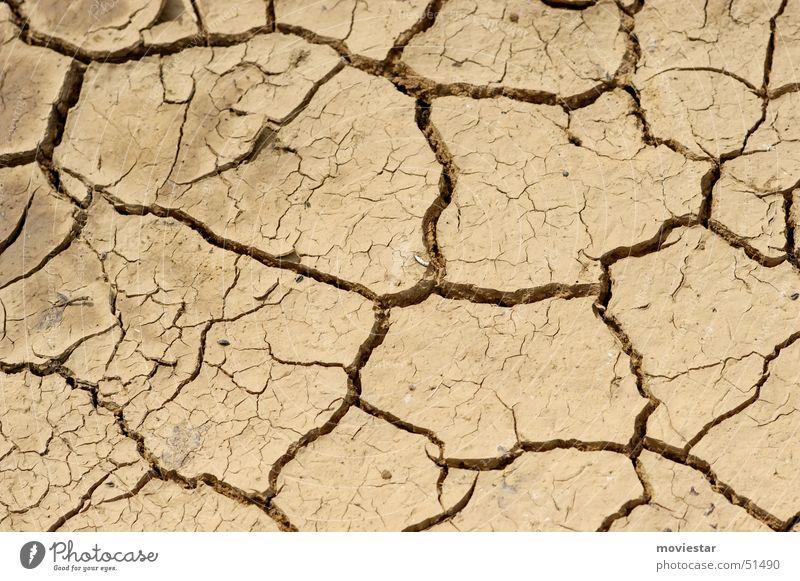 ausgetrocknet Wasser braun Bodenbelag trocken Riss Pfütze Dürre Lehm hellbraun