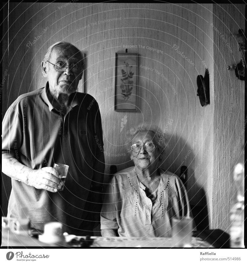 gemeinsam Mensch Frau Mann feminin Senior lachen Familie & Verwandtschaft maskulin sitzen Glas stehen Lächeln 60 und älter Fröhlichkeit beobachten Brille