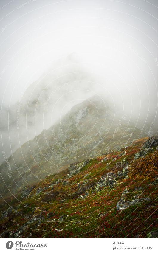 Vernebelung Natur Landschaft Einsamkeit Ferne Berge u. Gebirge Herbst grau Zeit Freiheit Stimmung Regen Nebel Perspektive Kommunizieren Zukunft Klima
