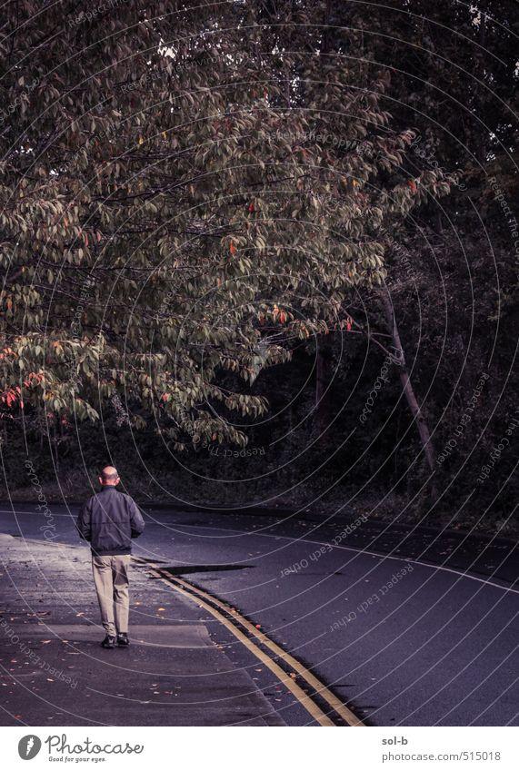 Mensch Natur Mann alt Baum Erholung Einsamkeit Erwachsene dunkel Straße Leben Senior Wege & Pfade Denken natürlich maskulin