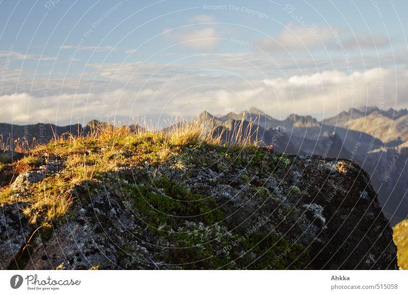 Blondschopf Natur Ferien & Urlaub & Reisen nackt Einsamkeit Landschaft ruhig Tier Ferne Berge u. Gebirge Leben Gras Freiheit Stimmung Zufriedenheit wandern