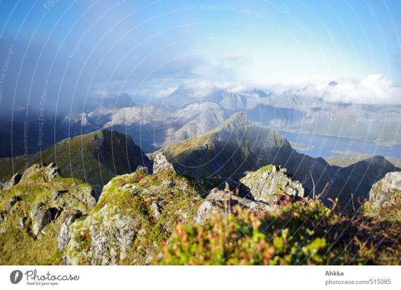 Lofoten XIX Himmel Natur Ferien & Urlaub & Reisen blau grün Erholung Landschaft Wolken Ferne Berge u. Gebirge Küste Freiheit Glück Stimmung Tourismus wandern
