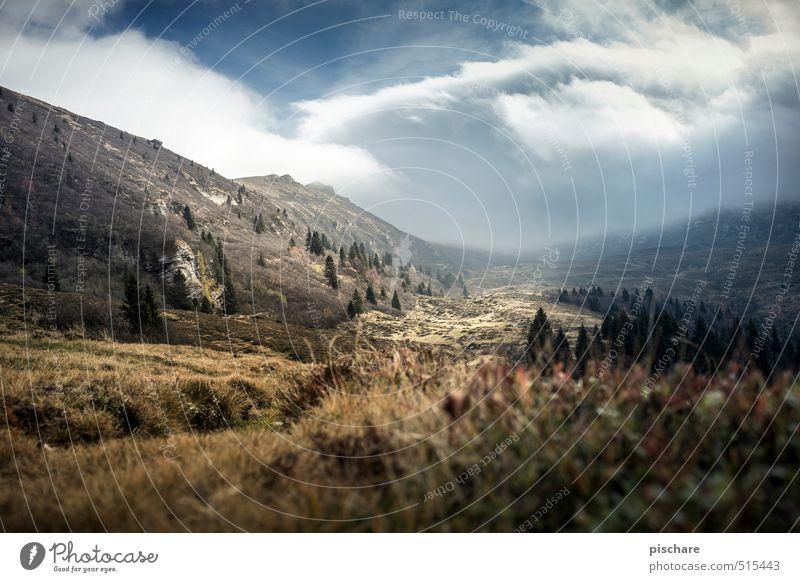 Heimat Natur Landschaft dunkel Berge u. Gebirge Herbst braun Nebel Klima Abenteuer Österreich Gewitterwolken