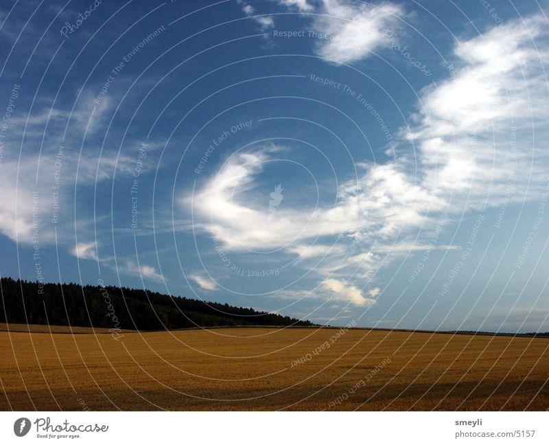erntezeit Natur Himmel Sonne Wolken Wald Wiese Gras Feld Getreide Ernte Stoppelfeld