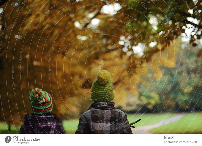 Lausbuben Mensch Kind Baum Wald Herbst Freundschaft Stimmung Zusammensein Park Freizeit & Hobby Kindheit Ausflug Spaziergang Fußweg Mütze entdecken
