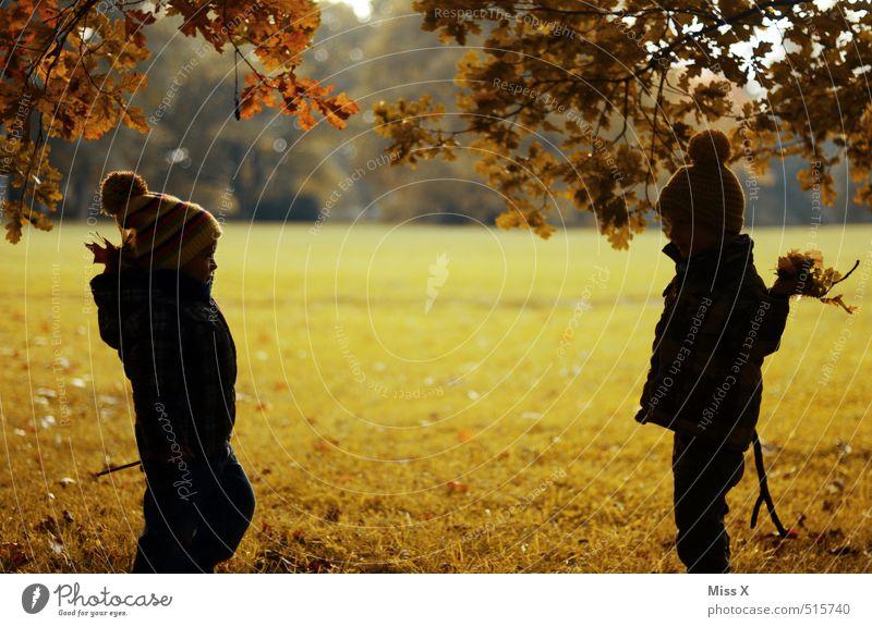 Auf die Mütze Mensch Kind Baum Freude Blatt Gefühle Herbst Spielen Freundschaft Stimmung Park Freizeit & Hobby Kindheit Fröhlichkeit niedlich Lebensfreude