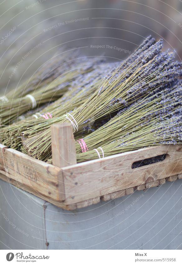 Lavendel Lebensmittel Kräuter & Gewürze Ernährung Bioprodukte Italienische Küche Blume Blüte Blühend Duft verblüht trocken violett Wochenmarkt Holzkiste