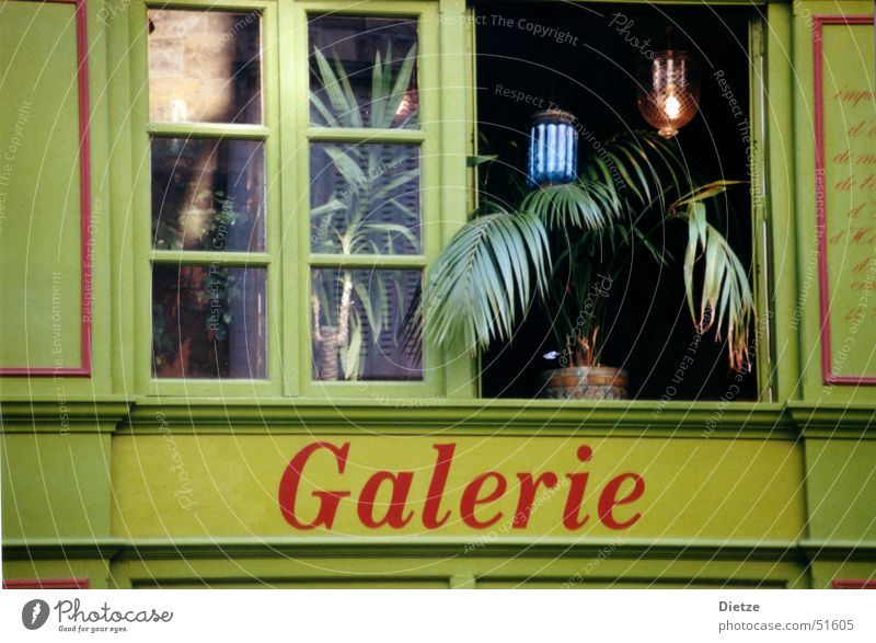 galerie grün Fenster Zimmerpflanze Paris Stimmung Empore Detailaufnahme Architektur