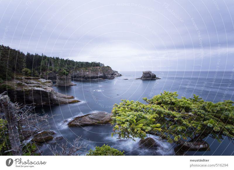 Washington Coast Ferien & Urlaub & Reisen Meer Wellen Natur Landschaft Wasser Felsen Küste Bucht träumen wandern blau Abenteuer entdecken Erholung Idylle