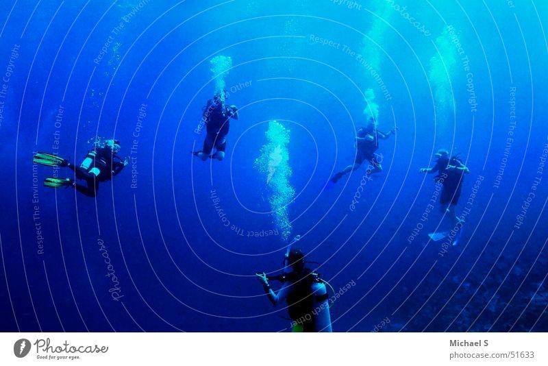 Tauchgruppe auf den Malediven tauchen Unterwasseraufnahme Taucher Wassersport Freiheit Schwerelosigkeit unterwasserfoto einer tauchgruppe