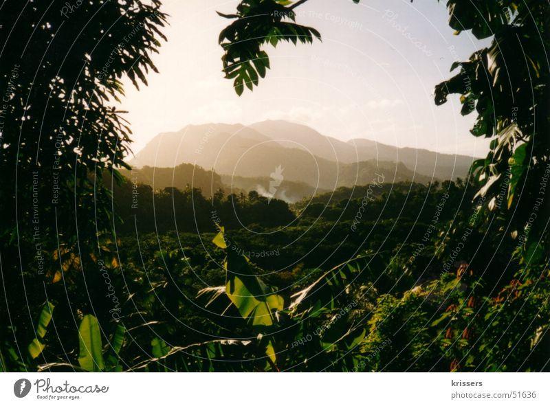 Commonwealth of Dominica Ferien & Urlaub & Reisen grün Sonne Erholung ruhig Ferne Berge u. Gebirge Freiheit Stimmung Nebel Tourismus Insel Ausflug heiß