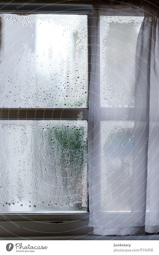 fogged glass Herbst Fenster Holz Glas Tropfen dunkel kalt nass trist Langeweile Traurigkeit Sorge Trauer Liebeskummer Sehnsucht Enttäuschung Einsamkeit
