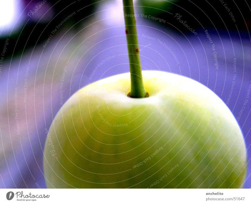 Apfel #1 alias Mirabelle rund saftig grün ruhig violett Hintergrundbild Ferne Pflaume Makroaufnahme Frucht Nahaufnahme Stengel fruit handle sphere purple juicy