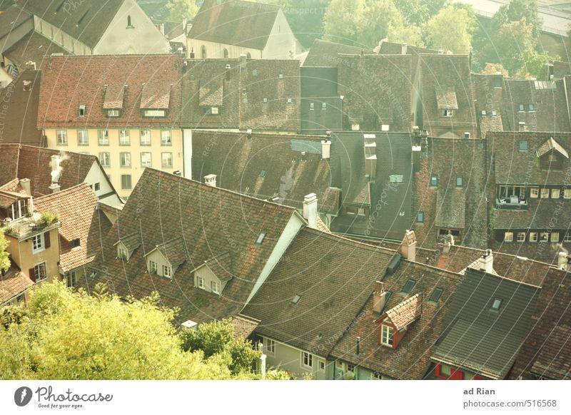 It's Hard To Be A Saint In The City Stadt alt Baum Haus Wand Leben Architektur Herbst Gebäude Mauer Platz Kirche Warmherzigkeit Schönes Wetter Dach Hoffnung