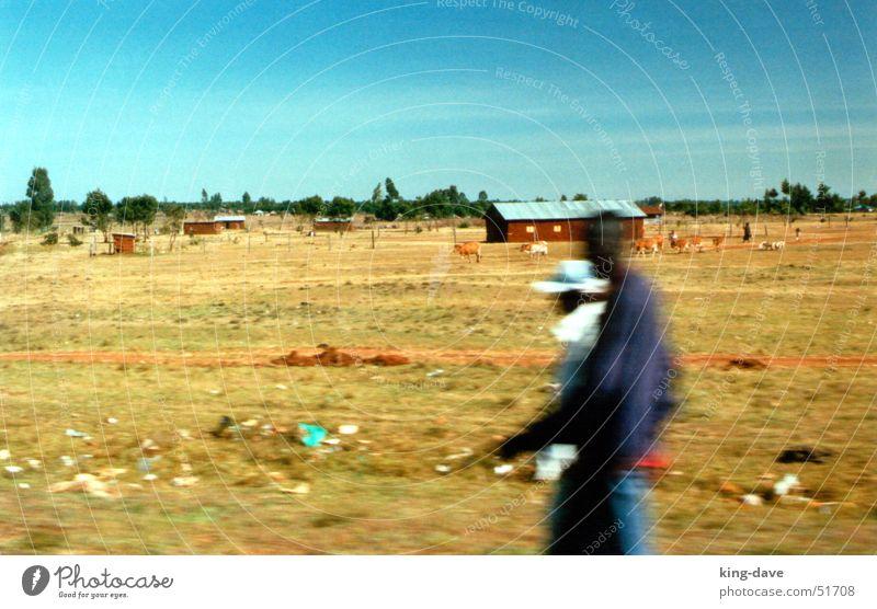 Auf dem Weg zur Safari Afrika schwarz weiß braun grün Baum Symbole & Metaphern Müll Haus Geschwindigkeit Kenia Mann fahren Mensch blau Straße Wege & Pfade