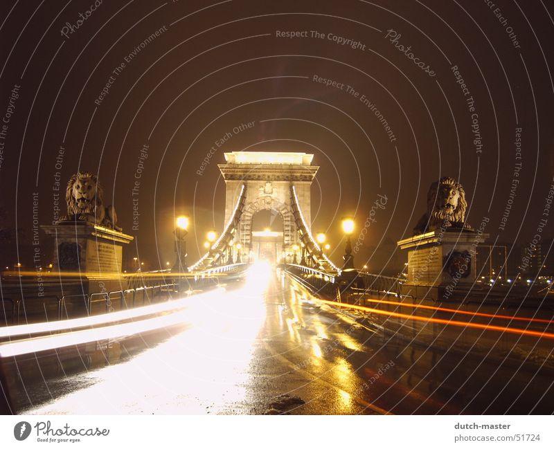 Into the light Budapest Belichtung Licht Rücklicht Löwe Beschützer nass kalt Ausflug unterwegs Lichtspiel Stress Geschwindigkeit Lampe Mittelstreifen