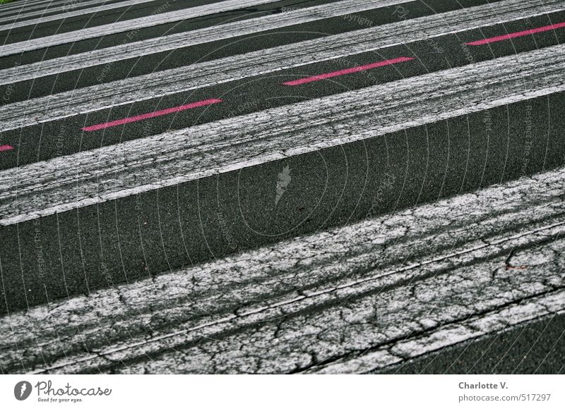 Rote Linie Menschenleer Straße Straßenbelag Markierungslinie Verkehrswege Schilder & Markierungen Zebrastreifen Streifen dunkel rot schwarz weiß Genauigkeit