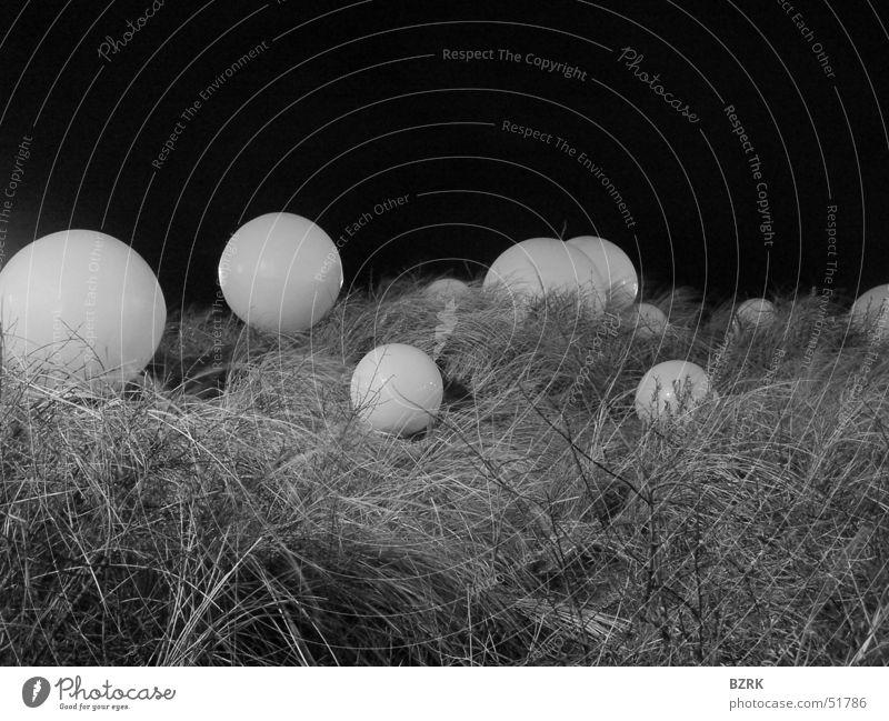 globes in the grass black & white spheres balls Ball Kugel
