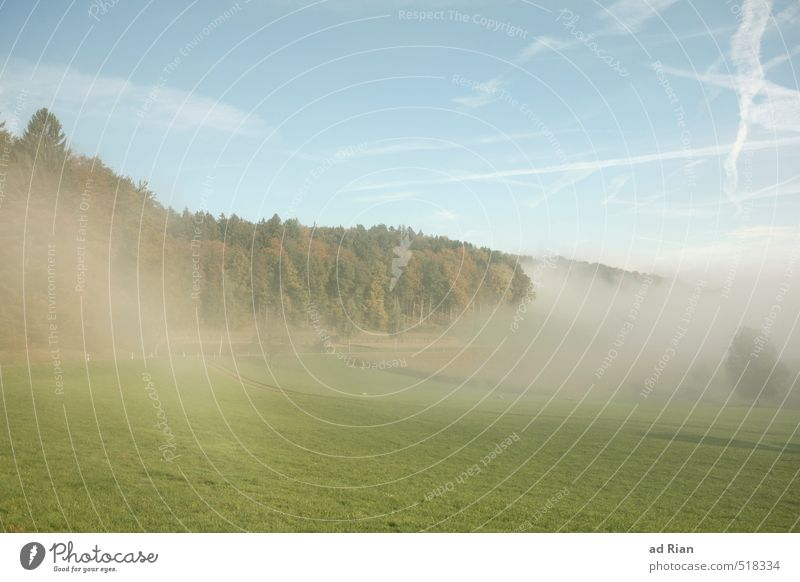 Zeitumstellung   Mein dein Tag Umwelt Natur Landschaft Tier Himmel Wolkenloser Himmel Sonne Herbst Klima Schönes Wetter Nebel Baum Gras Sträucher Wiese Feld