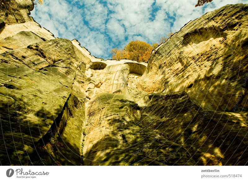 Festung Königstein Natur Ferien & Urlaub & Reisen Landschaft Umwelt Berge u. Gebirge Herbst Felsen Park Freizeit & Hobby Tourismus wandern Schönes Wetter