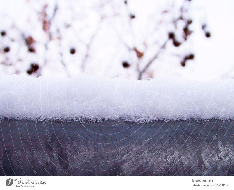 Winterstahl kalt Schnee Metall Ast Stahl Geländer Schneehaube