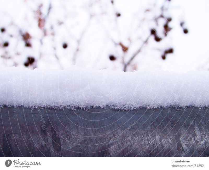 Winterstahl Winter kalt Schnee Metall Ast Stahl Geländer Schneehaube