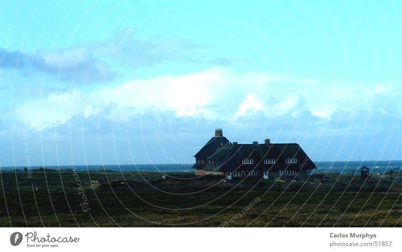 There is a house... Himmel Meer blau ruhig Haus Wolken Herbst Wiese Freiheit türkis Stranddüne November Sylt Riedgras Reetdach