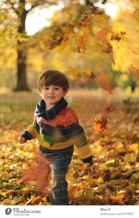 Auf die Mama Mensch Kind Freude Blatt Gefühle Herbst Spielen lachen Stimmung Park Freizeit & Hobby Kindheit Schönes Wetter niedlich Kleinkind Herbstlaub