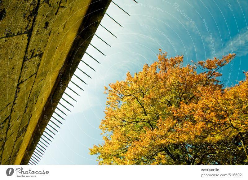 Patroullienweg Freizeit & Hobby Ferien & Urlaub & Reisen Tourismus Ausflug Abenteuer Expedition wandern Umwelt Natur Herbst Klima Klimawandel Wetter