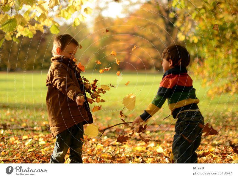 Auf die Rübe Mensch Kind Natur Freude Blatt Gefühle Herbst lustig Spielen Freundschaft Stimmung Familie & Verwandtschaft Park Freizeit & Hobby Kindheit Schönes Wetter