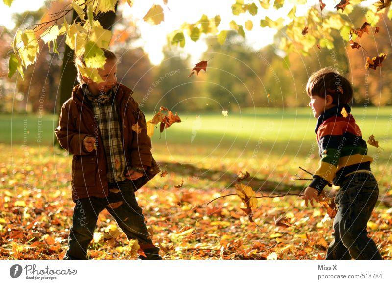 Auf den Bruder Mensch Kind Natur Freude Blatt Wiese Gefühle Herbst Spielen lachen Garten Freundschaft Stimmung Park Freizeit & Hobby Kindheit