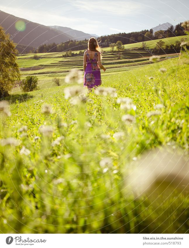 warten auf...den prinz =) Frau Natur Jugendliche schön Pflanze Sommer Sonne Baum Erholung Junge Frau Landschaft Erwachsene Umwelt Berge u. Gebirge Leben Liebe