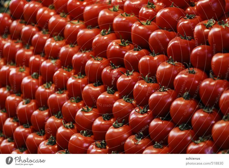 Tomaten Lebensmittel Gemüse Ernährung Bioprodukte Vegetarische Ernährung Gesundheit Gesunde Ernährung Pflanze Nutzpflanze frisch lecker süß rot Markt Farbfoto
