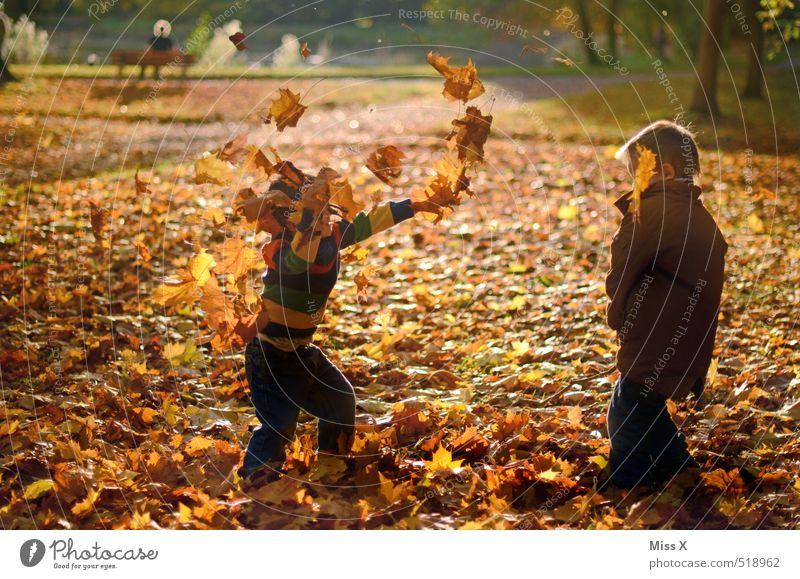 Laubschlacht Mensch Kind Baum Freude Blatt Wald Gefühle Herbst Spielen Freundschaft Stimmung Park Freizeit & Hobby Kindheit Fröhlichkeit Kleinkind