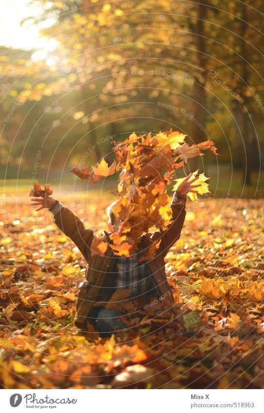 Laub is in the air Mensch Kind Natur Freude Blatt Wald Gefühle Herbst lustig Spielen Glück Garten Stimmung fliegen Park Freizeit & Hobby