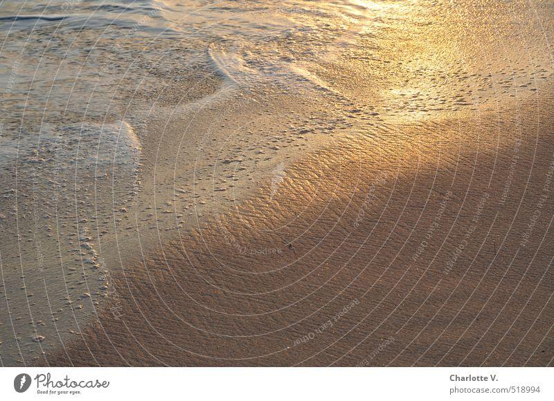 Gold schön weiß Wasser Meer Strand Wärme Bewegung grau Sand glänzend gold leuchten Schönes Wetter Insel nass ästhetisch