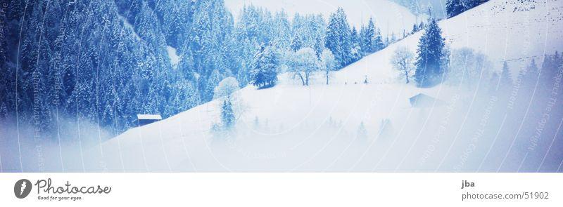 im winter weiß blau Winter Schnee Nebel Tanne Berghang Berghütte Saanenland Rellerli Abländschen