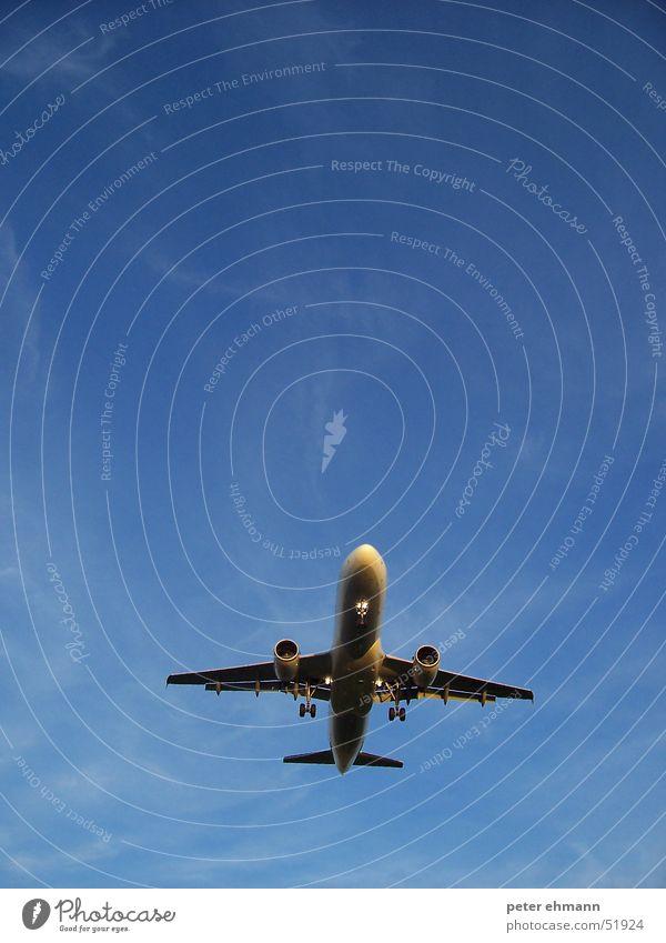 aeroplane Himmel blau Ferien & Urlaub & Reisen Wolken Ferne träumen Flugzeug fliegen Beginn Luftverkehr Flügel Flughafen Maschine Flugzeuglandung Abheben