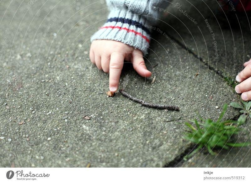 Herbst Mensch Natur Hand Leben Spielen natürlich Garten Park Freizeit & Hobby Kindheit Schönes Wetter Baby Platz Ausflug Finger