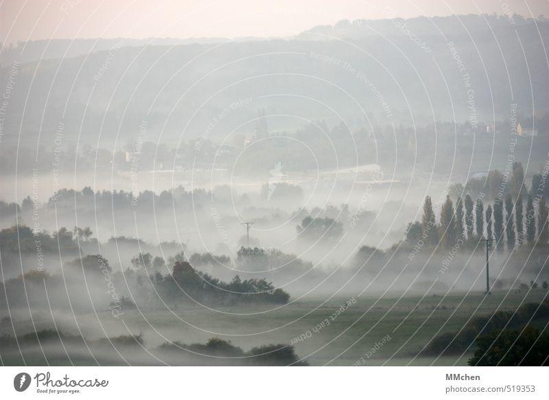 LandSchaft Natur Landschaft ruhig Ferne kalt Umwelt Herbst Freiheit oben Horizont Feld Nebel trist Ausflug Urelemente Aussicht