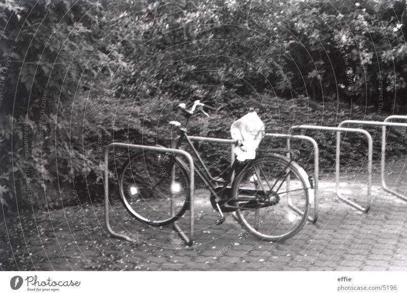 allein Fahrrad Dinge Einsamkeit Schwarzweißfoto Studium Schatten