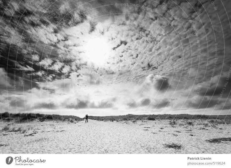 Dünenkater Mensch maskulin Körper 1 45-60 Jahre Erwachsene Umwelt Natur Urelemente Sand Luft Himmel Wolken Sonne Sonnenlicht Wetter Schönes Wetter Wind Küste