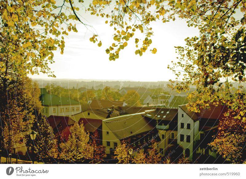 Pirna Natur Stadt schön Landschaft Haus Ferne Umwelt Herbst Freiheit Horizont Wetter Klima Tourismus wandern Schönes Wetter Ausflug