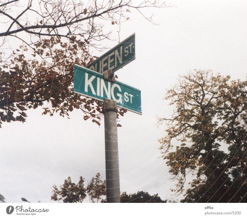kings and queens Baum Blatt Straße Schilder & Markierungen Herbst Straßennamenschild Indian Summer