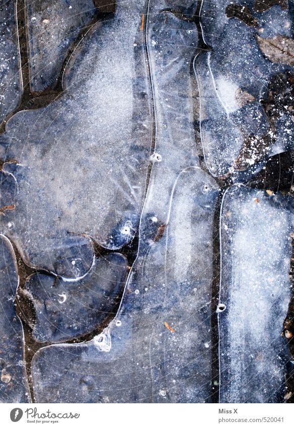 Eiszeit Luft Wasser Winter Frost Schnee kalt Pfütze gefroren Luftblase Wasseroberfläche Schwarzweißfoto Gedeckte Farben Außenaufnahme Nahaufnahme Detailaufnahme