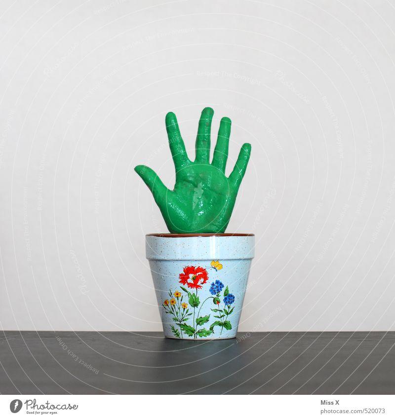 Grüner Daumen, Zeigefinger, Mittelfinger... Hand Finger Pflanze Blatt Topfpflanze exotisch Wachstum lustig grün bizarr Symbole & Metaphern Blumentopf Gärtner