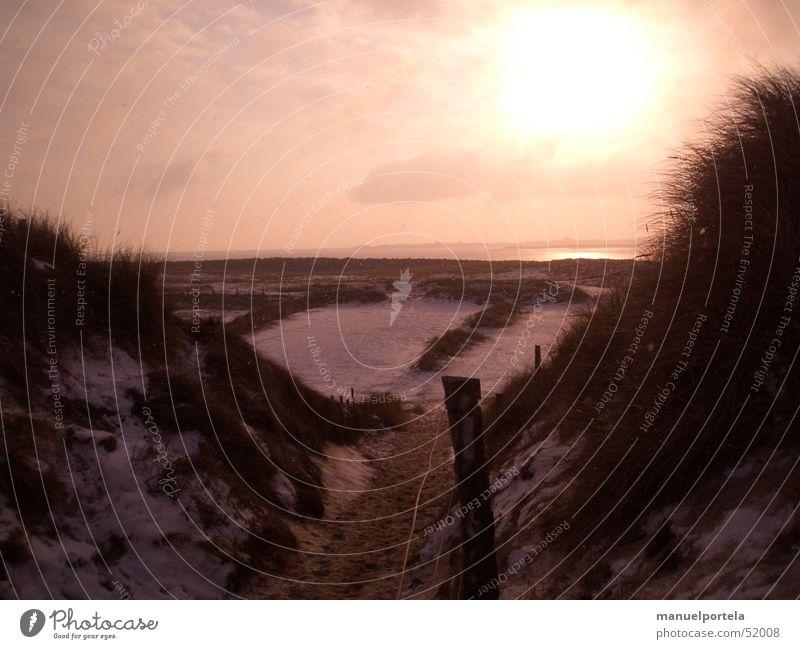 Ellenbogen Wasser Meer rot Winter Ferien & Urlaub & Reisen Schnee Gras Freiheit Wege & Pfade See orange Deutschland Insel Romantik Stranddüne Nordsee