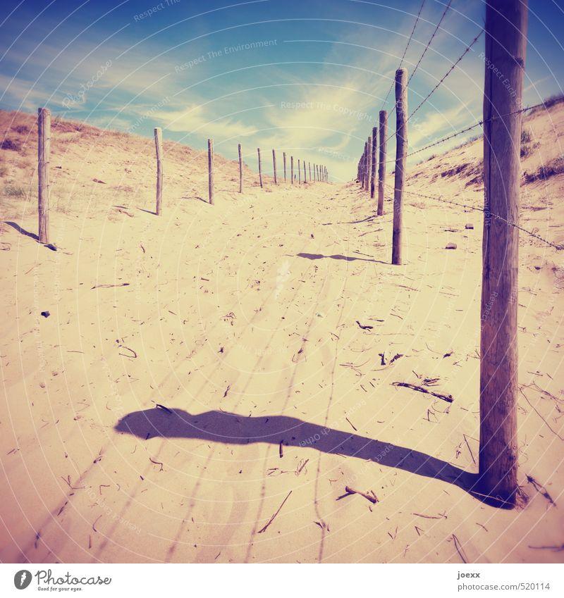 Begrenzte Freiheit Himmel blau schön Sommer Landschaft Wolken gelb Wege & Pfade Küste Holz Sand Horizont braun Idylle frei