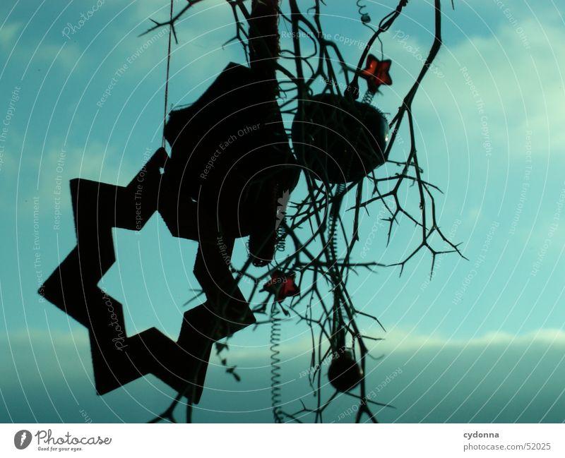 Sternstunde II Gesteck Silhouette schwarz Wolken Stimmung Winter Dekoration & Verzierung Himmel Makroaufnahme Nahaufnahme Stern (Symbol) blau